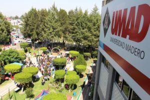 The Jungle Fest, un evento memorable para la Comunidad UMAD